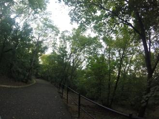 Citadel' path